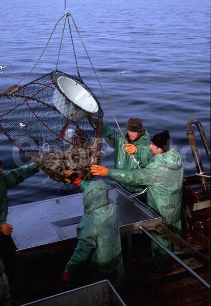 рыбалка в промыслах