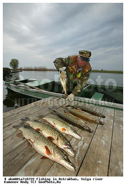 весенняя ловли рыбы на волге