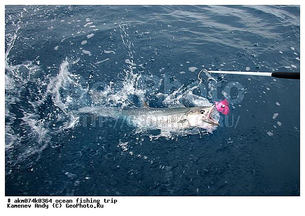 рыбалка на лодке в океане