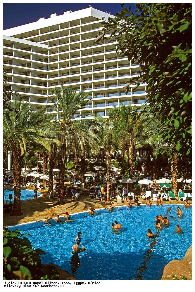 Вернуться к списку отелей египта