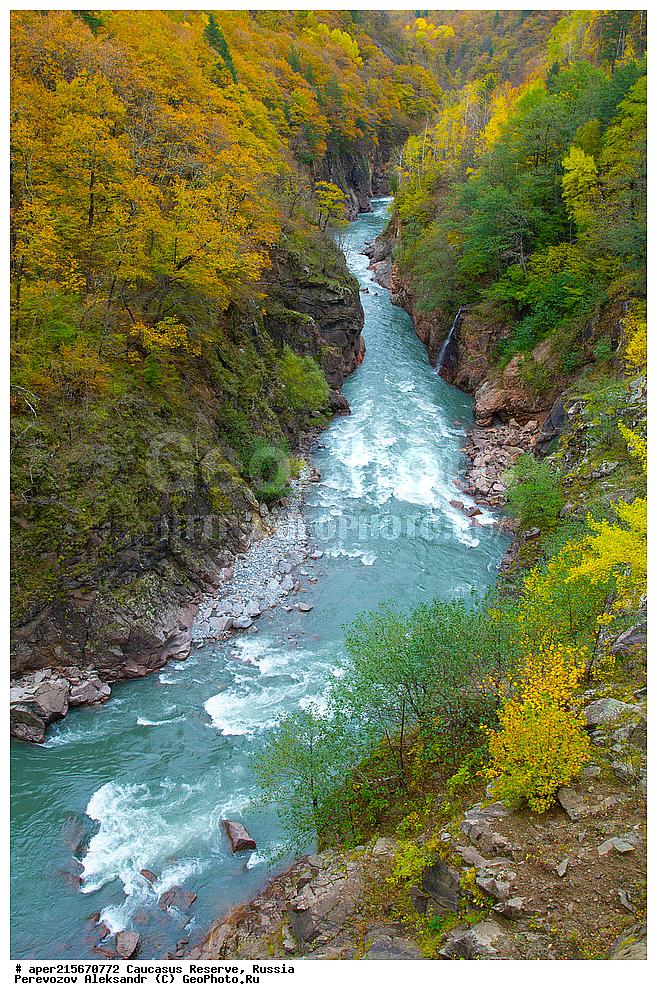 видео река белая кавказ