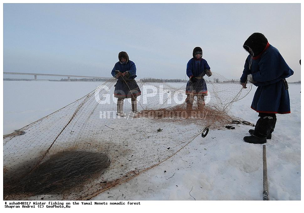 ненцы рыбалка