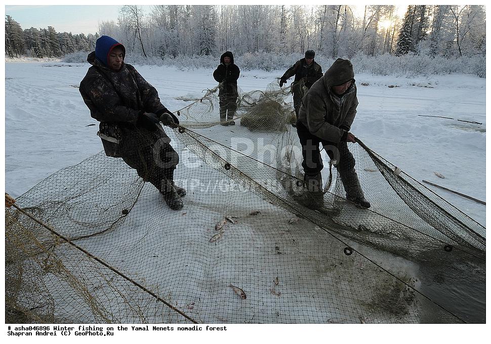 канал рыбалка и охота на спутнике ямал
