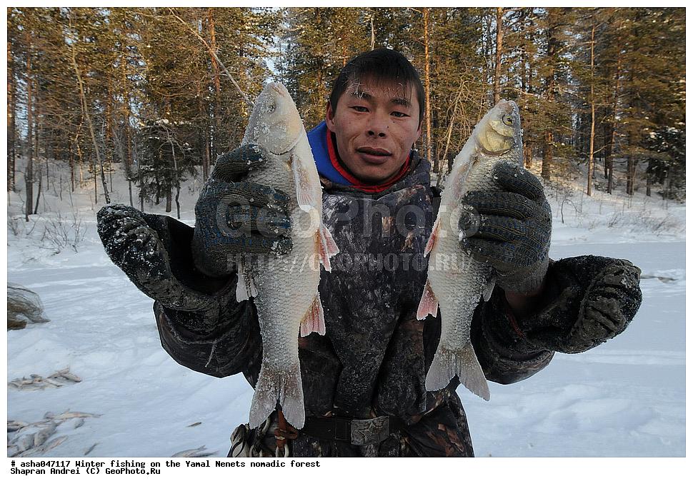 охота и рыбалка народов коми