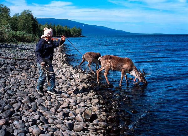 саамская рыбалка