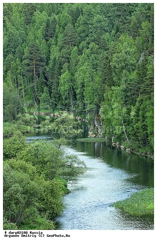 знакомства лесной свердловская область action