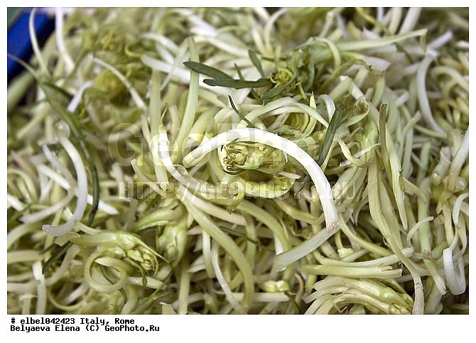 Италия рим зелень корзина кулинария