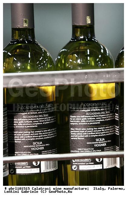 выращивания хмеля хорошее вино на сициилии приятным эротическим