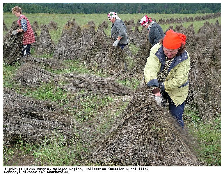 Готовые квартиры работа в лен обл сельськое хозяйство поставщики