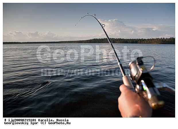 прогноз рыбалки в кондопоге