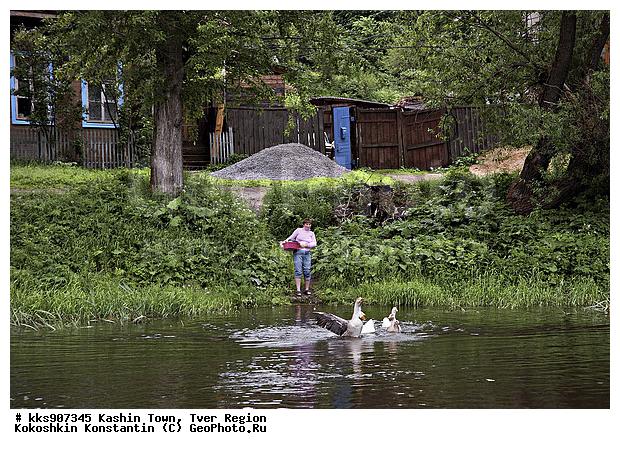 река плотня московская область рыбалка