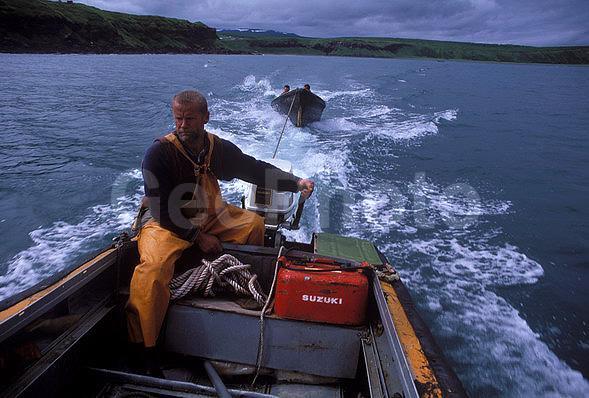 лавка рыбак камчатки