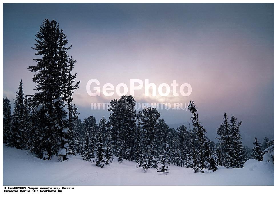 Зимний пейзаж природный парк кедрач