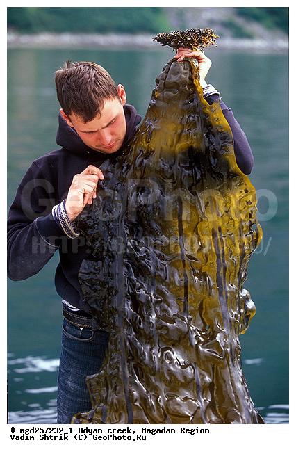 тот кто занимается ловлей рыбы как промыслом