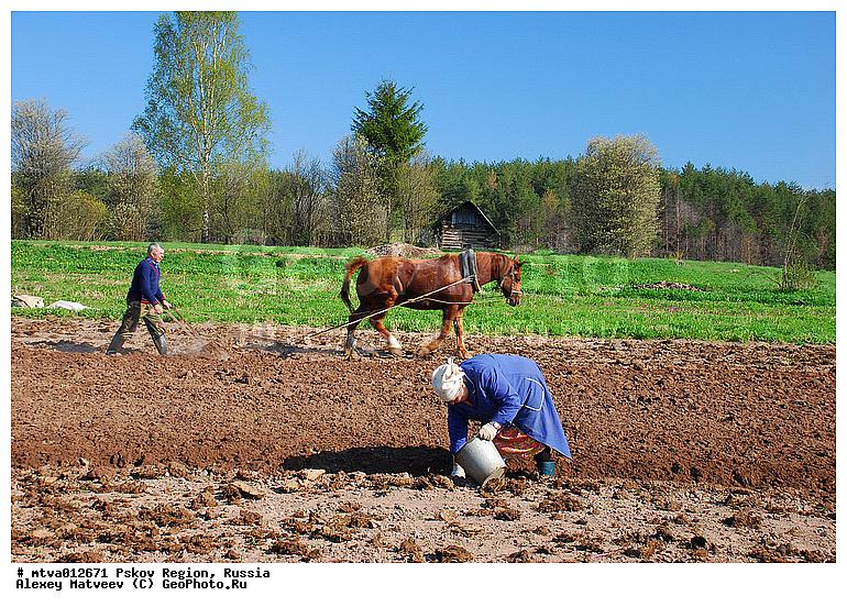 Оренбурге перекрыли работа в лен обл сельськое хозяйство заявку подключайтесь