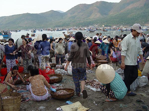 рыбацкий рынок нячанг