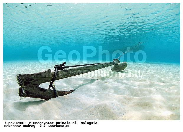 якорь в лодке пвх на воде