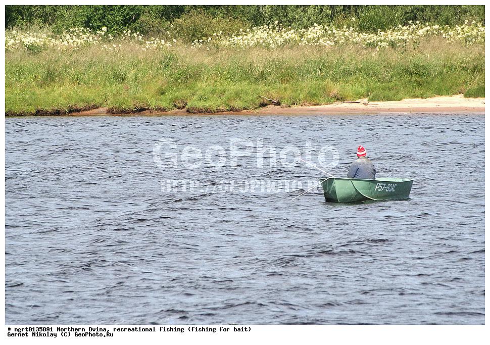 как ловить рыбу на северной двине