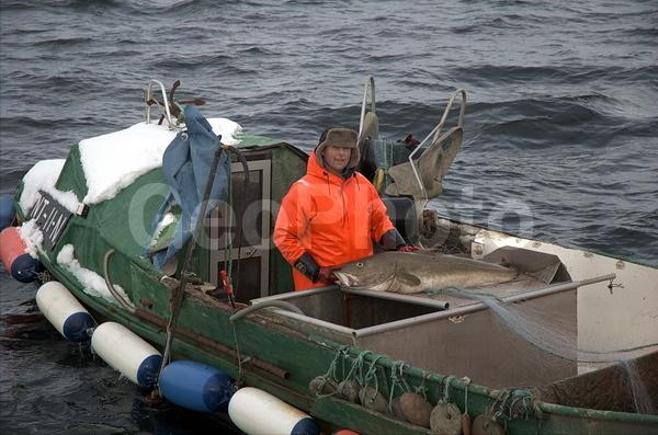 купить сети рыболовные в норвегии