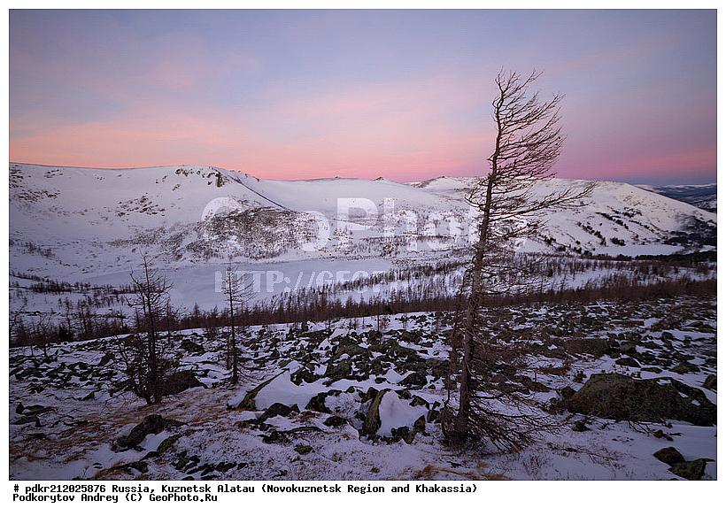 Зима зимний пейзаж кузнецкий лес