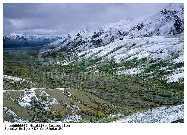 Alaska, Alaskabergkette, America, Amerika, Berg, Berge, Bergkette, Bergketten, Denali-Nationalpark, Denali Nationalpark, Eis, Frost, Gebirge, Gebirgszuege, Gebirgszug, Herbst, Herbstfarben, Herbstimmungen, Herbstlaub, Herbststimmung, Indian summer, Kaelte, Nordamerika, North America, Schnee, Tundra, Tundralandschaft, USA, United States, United States of America, Vereinigte Staaten, Vereinigte Staaten von Amerika, Winter, alaskarange, alaska range, autumn, autumnal color, autumnal colors, autumnal colour, autumnal colours, autumn color, autumn colors, autumn colour, autumn colours, autumn foliage, bunte Blaetter, buntes Laub, cold, countryside, eisig, fall, fall color, fall colors, fall colour, fall colours, fall foliage, freeze, freezing, frosted, frostig, herbstliche Tundra, ice, iced, icy, kalt, landscape, mountain, mountain chain, mountainous ridge, mountain range, mountains, range, ranges, ridge, scenery, scenic, snow, snowy, winter, Аляска, Денали, дикая природа, ландшафт, национальный парк, осенний, осень, пейзаж, яркий