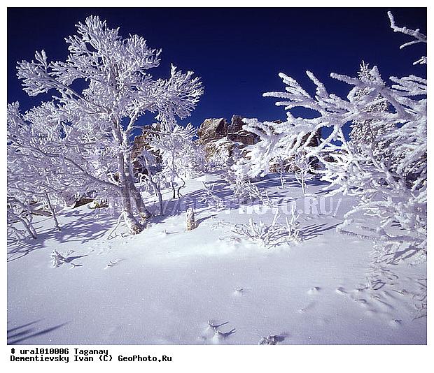 Зимний пейзаж горы