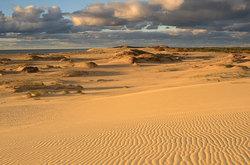 Золотая балтика пейзажи побережья