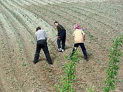 Работа в россии для мужчин сельское хозяйство
