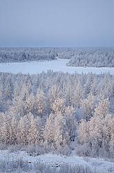 Зима ямало ненецкий автономный округ