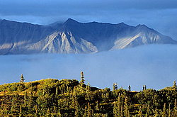 Alaska Range and Indian summer, Denali National Park
