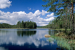 Swedish lake and reflection, Vaermland - Schweden
