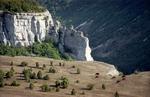 Пасущиеся на горе коровы, Крым